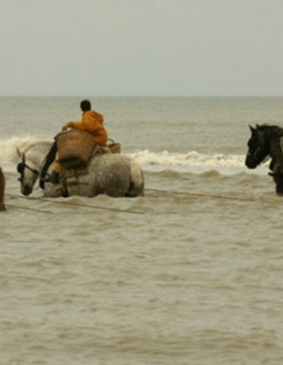 Vakantie aan de Belgische kust arrangementen paardevissers Oostduinkerke