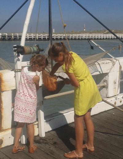 vakantiehuis aan de zee domein Rietvelde domein