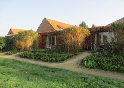 vakantiehuis aan zee domein Rietvelde groepshuisjes terrassen