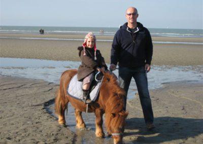 Vakantie aan de zee domein Rietvelde gezinsvakantie 3