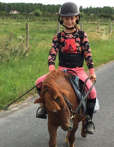 vakantie aan de zee gezinsvakantie met pony