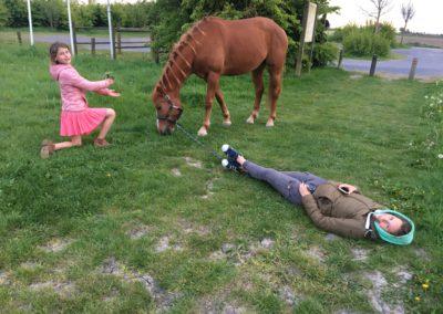 vakantie aan de zee met paard